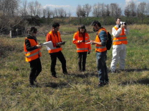 Odour Field Inspection